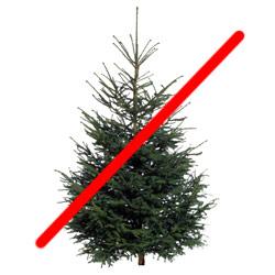 tree_stop.jpg